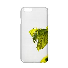 Leaves Nature Apple Iphone 6/6s Hardshell Case