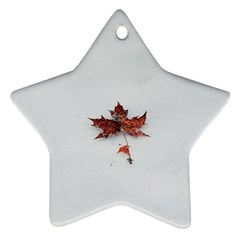 Winter Maple Minimalist Simple Star Ornament (two Sides)