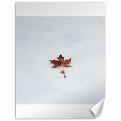 Winter Maple Minimalist Simple Canvas 12  X 16