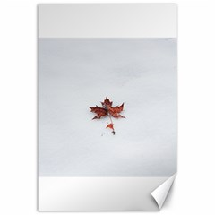 Winter Maple Minimalist Simple Canvas 24  X 36  by Nexatart