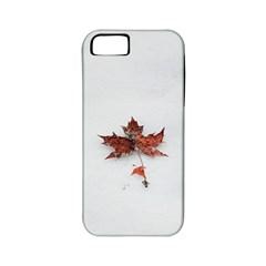 Winter Maple Minimalist Simple Apple Iphone 5 Classic Hardshell Case (pc+silicone) by Nexatart