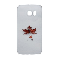Winter Maple Minimalist Simple Galaxy S6 Edge by Nexatart