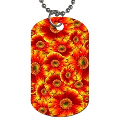 Gerbera Flowers Nature Plant Dog Tag (two Sides) by Nexatart