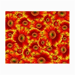 Gerbera Flowers Nature Plant Small Glasses Cloth