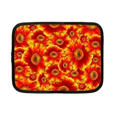 Gerbera Flowers Nature Plant Netbook Case (small)