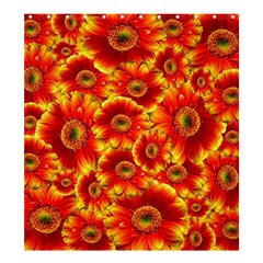 Gerbera Flowers Nature Plant Shower Curtain 66  X 72  (large)