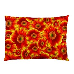 Gerbera Flowers Nature Plant Pillow Case (two Sides) by Nexatart