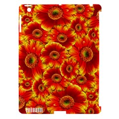 Gerbera Flowers Nature Plant Apple Ipad 3/4 Hardshell Case (compatible With Smart Cover) by Nexatart