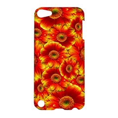 Gerbera Flowers Nature Plant Apple Ipod Touch 5 Hardshell Case