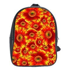Gerbera Flowers Nature Plant School Bags (xl)  by Nexatart