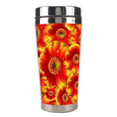 Gerbera Flowers Nature Plant Stainless Steel Travel Tumblers by Nexatart