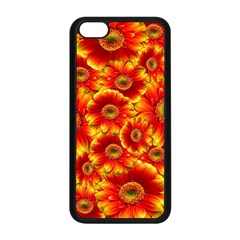 Gerbera Flowers Nature Plant Apple Iphone 5c Seamless Case (black) by Nexatart