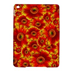 Gerbera Flowers Nature Plant Ipad Air 2 Hardshell Cases by Nexatart