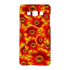 Gerbera Flowers Nature Plant Samsung Galaxy A5 Hardshell Case  by Nexatart