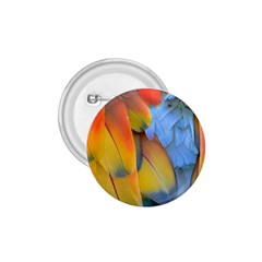 Spring Parrot Parrot Feathers Ara 1 75  Buttons by Nexatart