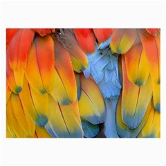 Spring Parrot Parrot Feathers Ara Large Glasses Cloth by Nexatart