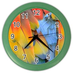 Spring Parrot Parrot Feathers Ara Color Wall Clocks by Nexatart