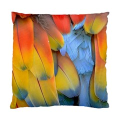 Spring Parrot Parrot Feathers Ara Standard Cushion Case (two Sides)