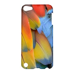 Spring Parrot Parrot Feathers Ara Apple Ipod Touch 5 Hardshell Case