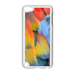 Spring Parrot Parrot Feathers Ara Apple Ipod Touch 5 Case (white) by Nexatart
