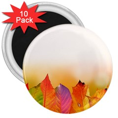 Autumn Leaves Colorful Fall Foliage 3  Magnets (10 Pack)  by Nexatart
