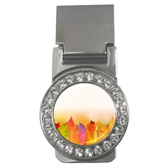 Autumn Leaves Colorful Fall Foliage Money Clips (cz)  by Nexatart