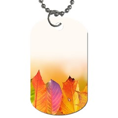 Autumn Leaves Colorful Fall Foliage Dog Tag (two Sides) by Nexatart