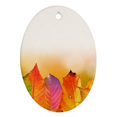 Autumn Leaves Colorful Fall Foliage Oval Ornament (two Sides) by Nexatart