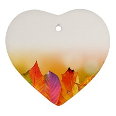 Autumn Leaves Colorful Fall Foliage Heart Ornament (two Sides) by Nexatart