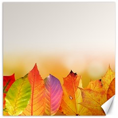 Autumn Leaves Colorful Fall Foliage Canvas 16  X 16   by Nexatart