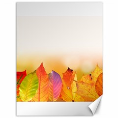 Autumn Leaves Colorful Fall Foliage Canvas 36  X 48   by Nexatart