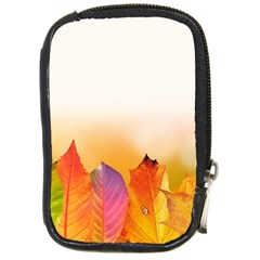 Autumn Leaves Colorful Fall Foliage Compact Camera Cases by Nexatart