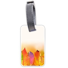 Autumn Leaves Colorful Fall Foliage Luggage Tags (one Side)  by Nexatart