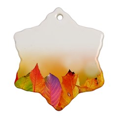 Autumn Leaves Colorful Fall Foliage Snowflake Ornament (two Sides) by Nexatart