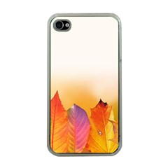 Autumn Leaves Colorful Fall Foliage Apple Iphone 4 Case (clear)