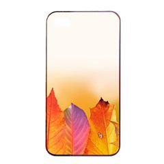 Autumn Leaves Colorful Fall Foliage Apple Iphone 4/4s Seamless Case (black) by Nexatart