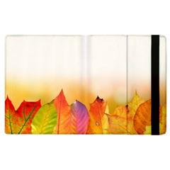 Autumn Leaves Colorful Fall Foliage Apple Ipad 3/4 Flip Case by Nexatart