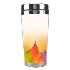Autumn Leaves Colorful Fall Foliage Stainless Steel Travel Tumblers by Nexatart