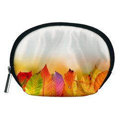 Autumn Leaves Colorful Fall Foliage Accessory Pouches (medium)  by Nexatart