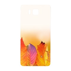 Autumn Leaves Colorful Fall Foliage Samsung Galaxy Alpha Hardshell Back Case by Nexatart