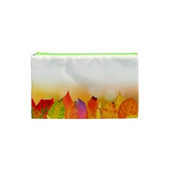 Autumn Leaves Colorful Fall Foliage Cosmetic Bag (xs)