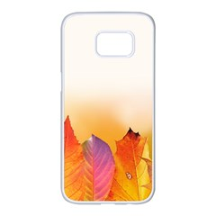 Autumn Leaves Colorful Fall Foliage Samsung Galaxy S7 Edge White Seamless Case by Nexatart