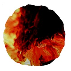 Fire Log Heat Texture Large 18  Premium Round Cushions by Nexatart
