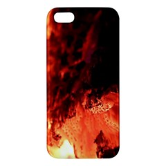 Fire Log Heat Texture Apple Iphone 5 Premium Hardshell Case by Nexatart