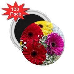 Flowers Gerbera Floral Spring 2 25  Magnets (100 Pack)