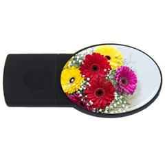 Flowers Gerbera Floral Spring Usb Flash Drive Oval (4 Gb) by Nexatart
