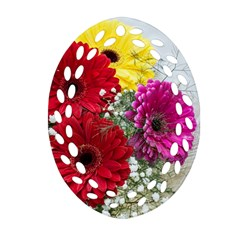 Flowers Gerbera Floral Spring Oval Filigree Ornament (two Sides) by Nexatart