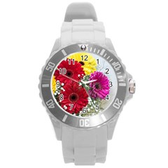 Flowers Gerbera Floral Spring Round Plastic Sport Watch (l) by Nexatart