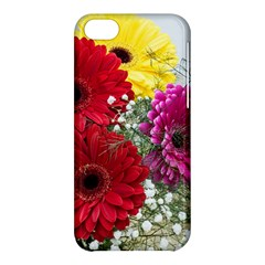 Flowers Gerbera Floral Spring Apple Iphone 5c Hardshell Case