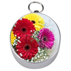 Flowers Gerbera Floral Spring Silver Compasses